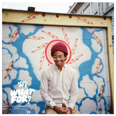 Toro Y Moi What For album cover